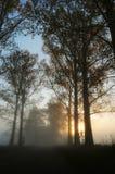 Stunning foggy landscape Royalty Free Stock Photo