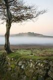 Beautiful foggy sunrise landscape over the tors in Dartmoor reve. Stunning foggy sunrise landscape over the tors in Dartmoor revealing peaks through the mist stock photography