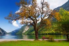 Stunning głęboko - zieleń nawadnia Konigssee, zna jako Niemcy ` s głęboki i czysty jezioro, lokalizować w krańcowym południowo-ws Fotografia Stock