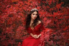 Stunning girl in a red dress. Incredible stunning girl in a red dress. The background is fantastic autumn. Artistic photography stock images