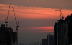 Stunning after grow of sunset sky over the working cranes of constructing site, Bangkok. Thailand Royalty Free Stock Photography