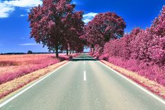 Stunning infrared view on purple fantasy landscapes with some ashpalt roads royalty free stock image