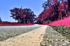 Stunning infrared view on purple fantasy landscapes with some ashpalt roads stock photos