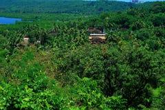 Stunning Konkan landscape Royalty Free Stock Photo