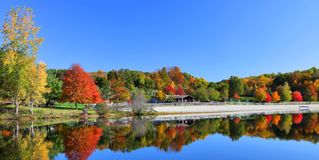 Stunning lake in fall Stock Images