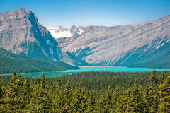 Stunning landscape in Alberta, Canada Stock Images