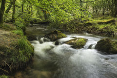 Stunning landscape iamge of river flowing through lush green for Royalty Free Stock Images
