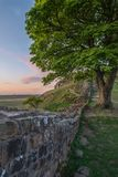 Beautiful landscape image of Sycamore Gap at Hadrian`s Wall in N. Stunning landscape image of Sycamore Gap at Hadrian`s Wall in Northumberland at sunset with Royalty Free Stock Image