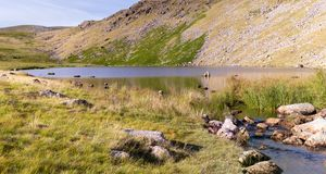 Stunning landscape view of Greendale Tarn and Greendale Gill stream in the Lake District National Park (UK) on a beautiful sunny. Stunning landscape view of stock photo