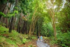 Stunning landscape view seen from Waihee Ridge Trail, Maui, Hawaii. USA Stock Image