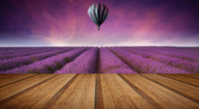 Stunning lavender field landscape Summer sunset with hot air bal. Beautiful image of lavender field Summer sunset landscape with hot air balloon with wooden Royalty Free Stock Photos