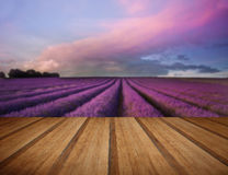 Stunning lavender field landscape Summer sunset with wooden plan Royalty Free Stock Photography