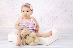 Stunning little baby girl with teddy bear. Studio portrait of adorable toddler playing with plush toy stock image