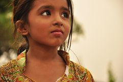 Stunning look of indian little girl Stock Image