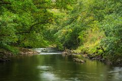 Stunning lush green riverbank with river flowing slowly past cal. Beautiful lush green riverbank with river flowing slowly past calm landscape stock images
