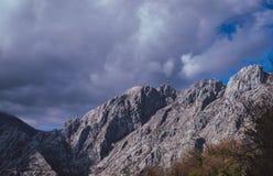 Mountains around Kotor Bay royalty free stock photo