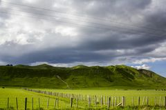 Stunning landscape with sheep and cows grazing on vibrant green meadows royalty free stock photography