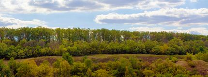 October deciduous European forest panorama royalty free stock photo