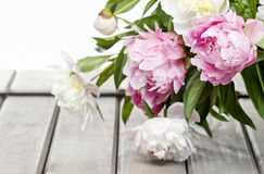 Stunning peonies in white wicker basket Stock Images