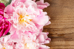 Stunning peonies on wooden background Royalty Free Stock Image