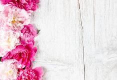 Stunning peonies on wooden background