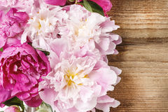Stunning pink peonies on rustic wood Stock Photo