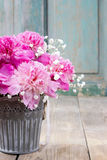 Stunning pink peonies in silver bucket Royalty Free Stock Photography
