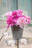 Stunning pink peonies in silver bucket Stock Photos