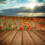 Stunning poppy field landscape in Summer sunset light with wooden planks floor stock photos