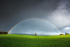 Stunning Rainbow Field. Stunning rainbow over a field in the Clare Valley stock photo