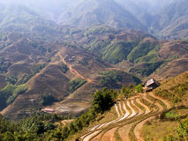 Stunning Rice Terrace Scenery Royalty Free Stock Photography