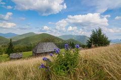Stunning rural farm with old hut Bran, Carpatians Royalty Free Stock Images