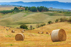 Stunning rural landscape with hay bales in Tuscany,Italy,Europe royalty free stock photo
