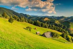 Stunning rural landscape near Bran,Transylvania,Romania,Europe Stock Images