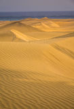 Stunning sand dunes Royalty Free Stock Images