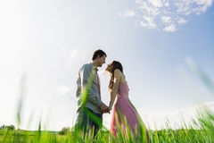 Stunning sensual outdoor portrait of young stylish fashion attractive couple in love kissing in summer field Stock Photos