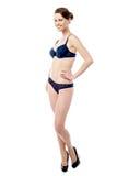 Stunning sexy woman in bikini Royalty Free Stock Photos