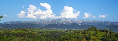 Stunning summer forest landscape in Romania. Stunning summer landscape in Romania: Piatra Craciului mounatin panorama Stock Photography