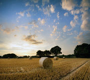 Stunning Summer sunset landscape over feild of hay bales Stock Photography