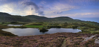 Stunning sunrise panorama landscape of heather with mountain lak Royalty Free Stock Photography