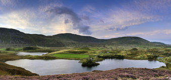 Stunning sunrise panorama landscape of heather with mountain lak Royalty Free Stock Image