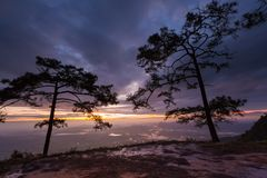 Stunning sunrise with silhouette pine trees Stock Image