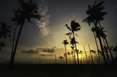 Stunning sunrise sunset at coastline.silhouette image of coconut tree. Beautiful sky and clouds color Stock Image