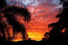 Stunning Sunset 1. Stunning, vibrant sunset taken in winter, Gold Coast Royalty Free Stock Photos