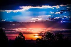 Stunning sunset. A stunning sunset im the forest stock photos