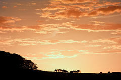 Stunning sunset sky with silhouette landscape Royalty Free Stock Photography