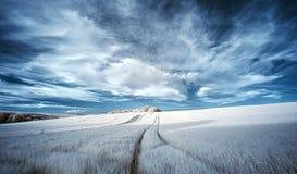 Stunning surreal false color infrared Summer landscape over agricultural fields