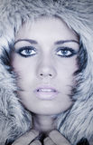 Stunning Teenage Girl in Fur Hood royalty free stock photo