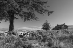 Stunning toned black and white landscape image of Nun`s Cross Fa. Beautiful black and white landscape image of Nun`s Cross Farm in Dartmoor stock images