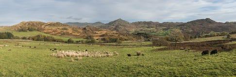 Stunning tourism landscape image of Lake District during Autumn Stock Photos